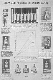 McCarrison Cantor Lectures 2 Indian Physique