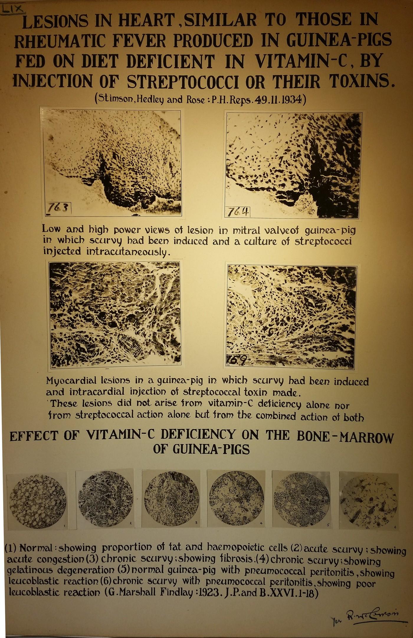 Mc Vitamin C Streptacocus